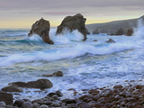 Cove and Seastacks Near Garrapata State, Beach Big Sur, California Photographic Print by Tim Fitzharris/Minden Pictures