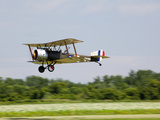 A Sopwith 1-1/2 Strutter Flies Low over a Grass Runway Fotografiskt tryck av Pete Ryan