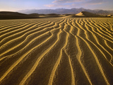 Sand Dunes, Death Valley National Park, California Photographic Print by Tim Fitzharris/Minden Pictures