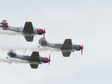 Yak 52Tw Aircraft Fly in Formation. Yak 52Tw Aircraft Fly in Formation Photographic Print by Raul Touzon