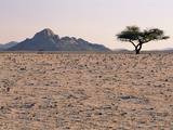 Gravel Plains before Spring Rains, Namib Desert, Namibia. Sequence 1 of 2 Fotografie-Druck von Michael and Patricia Fogden/Minden Pictures