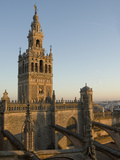 View of the Giralda Tower and the Rooftop of the Cathedral of Seville Fotografiskt tryck av Krista Rossow