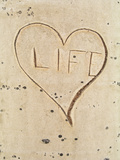 "Carved ""Life"" Symbol and Heart in an Aspen Tree Photographic Print by  Greg"