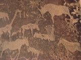 Petroglyphs of Animals Hunted by Bushmen, Twyfelfontein, Namibia Photographic Print by Michael and Patricia Fogden/Minden Pictures