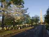Dogwood Flowers and Graves at the Oakland Cemetery in Atlanta, Georgia Photographic Print by Krista Rossow