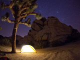 A Climber's Tent Lights Up a Joshua Tree in the Clear Desert Night Photographic Print by Ben Horton