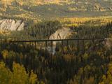 Train Tressel at Riley Creek, Denali National Park , Alaska Photographic Print by Michael S. Quinton