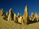 The Pinnacles, Nambung National Park, Western Australia Photographic Print by Michael and Patricia Fogden/Minden Pictures
