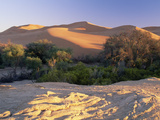 Kuiseb River Dividing Dunes from Gravel Plains, Namib Desert, Namib-Naukluft Nat&#39;l Park, Namibia Fotografie-Druck von Michael and Patricia Fogden/Minden Pictures