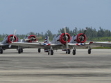 A Group of T-6 Texan on the Runway Photographic Print by Raul Touzon