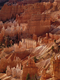 Hoodoo Formations from Sunrise Point, Bryce Canyon National Park, Utah Photographic Print by Gerry Ellis