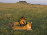 African Lion (Panthera Leo) Male and Female, Masai Mara, Kenya Photographic Print by Suzi Eszterhas/Minden Pictures