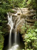 Waterfall in a Tributary of the Salobra River, Brazil Fotografie-Druck von Luciano Candisani/Minden Pictures