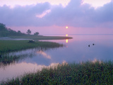Marsh at Sunrise over Eagle Bay, St Joseph Peninsula, Florida Photographic Print by Tim Fitzharris/Minden Pictures