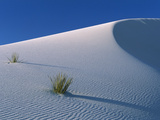 White Dunes in Gypsum Dune Field, White Sands National Monument, New Mexico Fotografisk tryk af Konrad Wothe