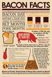 Fakta o slanině – Bacon Facts (text vangličtině) Plakát