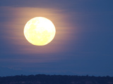 Full Moon over Rainforest, South America Photographic Print by Pete Oxford