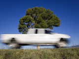 A Truck Passes a Roadside Tree in the San Luis Valley, Colorado Photographic Print by Scott S. Warren