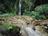 Waterfall on Gombe Stream in Low Montane Tropical Rainforest, Tanzania Photographic Print by Gerry Ellis