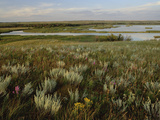 Sage Prairie and Marsh in Upper Souris National Wildlife Refuge, North Dakota Photographic Print by Gerry Ellis