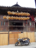 A Motorcycle Parked under Corn Cobs Hanging from Eaves to Dry Photographic Print by O. Louis Mazzatenta