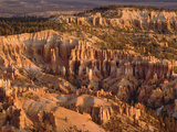Hoodoo Formations in Bryce Amphitheater from Bryce Point, Utah Photographic Print by Gerry Ellis