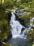 Waterfalls of Sol Duc River, Olympic National Park, Washington Fotografiskt tryck av Konrad Wothe