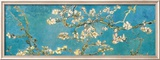 Almendro con flores, San Remy (Almond Branches in Bloom, San Remy, ca.1890) Lminas por Vincent van Gogh
