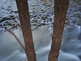 Rapids on the Virgin River Photographic Print by Raul Touzon