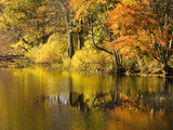 Fall Colors Reflected in Eagleville Lake Photographic Print by Mauricio Handler