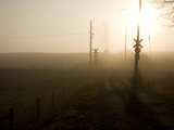 A Railroad Crossing Cloaked in Morning Fog Photographic Print by Stephen St. John