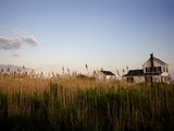 Reeds Obscuring Houses in Tylerton on Smith Island Photographic Print by Aaron Huey