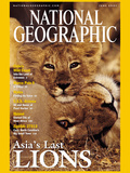 Cover of the June, 2001 Issue of National Geographic Magazine Photographic Print by Mattias Klum