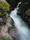 A Stream Rushing Past Moss-Covered Rocks Photographic Print by Bates Littlehales