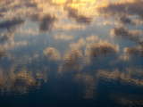 Clouds Reflections in Water, Chincoteague National Wildlife Refuge Photographic Print by Karen Kasmauski