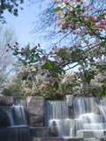 Cherry Trees and Fountain at the Franklin Delano Roosevelt Memorial Photographic Print by Paul Sutherland