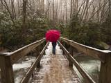 Girl Walking across a Wooden Bridge During a Spring Snowfall Fotografisk tryk af Karen Kasmauski