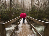 Girl Walking across a Wooden Bridge During a Spring Snowfall Photographic Print by Karen Kasmauski