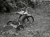 A Tricycle Missing Handlebars in Summer Grass Photographic Print by Brian Gordon Green