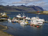 A View of the Harbor at Djupivogur, Iceland Photographic Print by Nigel Hicks