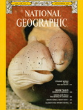Cover of the September, 1975 Issue of National Geographic Magazine Photographic Print by David Doubilet