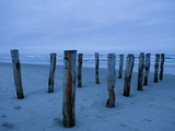 Evening View of the Old Pier Pilings on Saint Clair Beach Photographic Print by Bill Hatcher