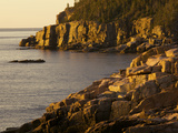 Otter Cliff at Sunrise, in Acadia National Park Photographic Print by Tim Laman