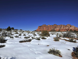 Footprints in the Snow in Zion National Park Photographic Print by Raul Touzon
