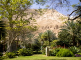 Kibbutz Ein Gedi, also a Botanical Garden Photographic Print by Richard Hewitt Nowitz