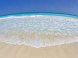 Fisheye View White Sand Beach and Turquoise Waters in Cancun Fotografisk tryk af Mike Theiss