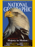 Cover of the July, 2002 Issue of National Geographic Magazine Lámina fotográfica por Norbert Rosing