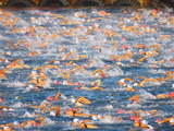A Sea Full of Swimmers Competing in the Ironman Triathlon Photographic Print by Patrick McFeeley