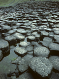 The Giant's Causeway Rock Formation of Volcanic Basalt Rock Photographic Print by Bates Littlehales