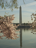 Cherry Blossoms at the Tidal Basin in Washington D.C. Photographic Print by Karen Kasmauski